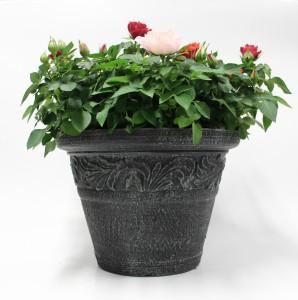 バラ石鉢2