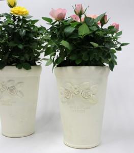 バラ石鉢3