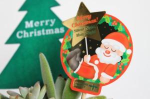 クリスマス多肉植物2